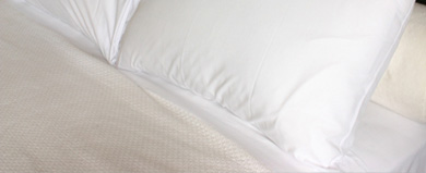 Eiderdown Pillow